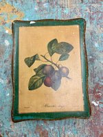 French Plum Trinket Box