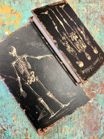 Skeleton Treasure Box