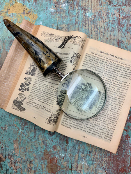 Magnifying Glass (Multi)