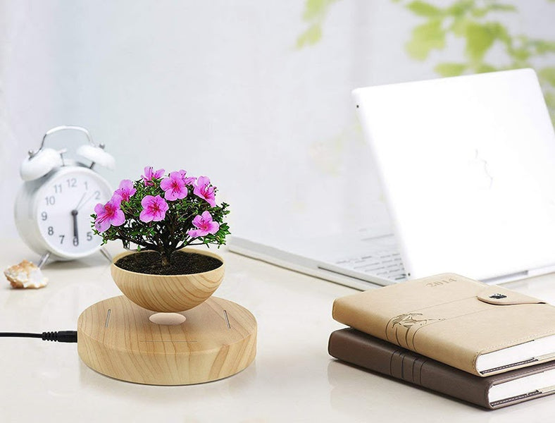 Desk Gift Items for Every Type of Home or Office