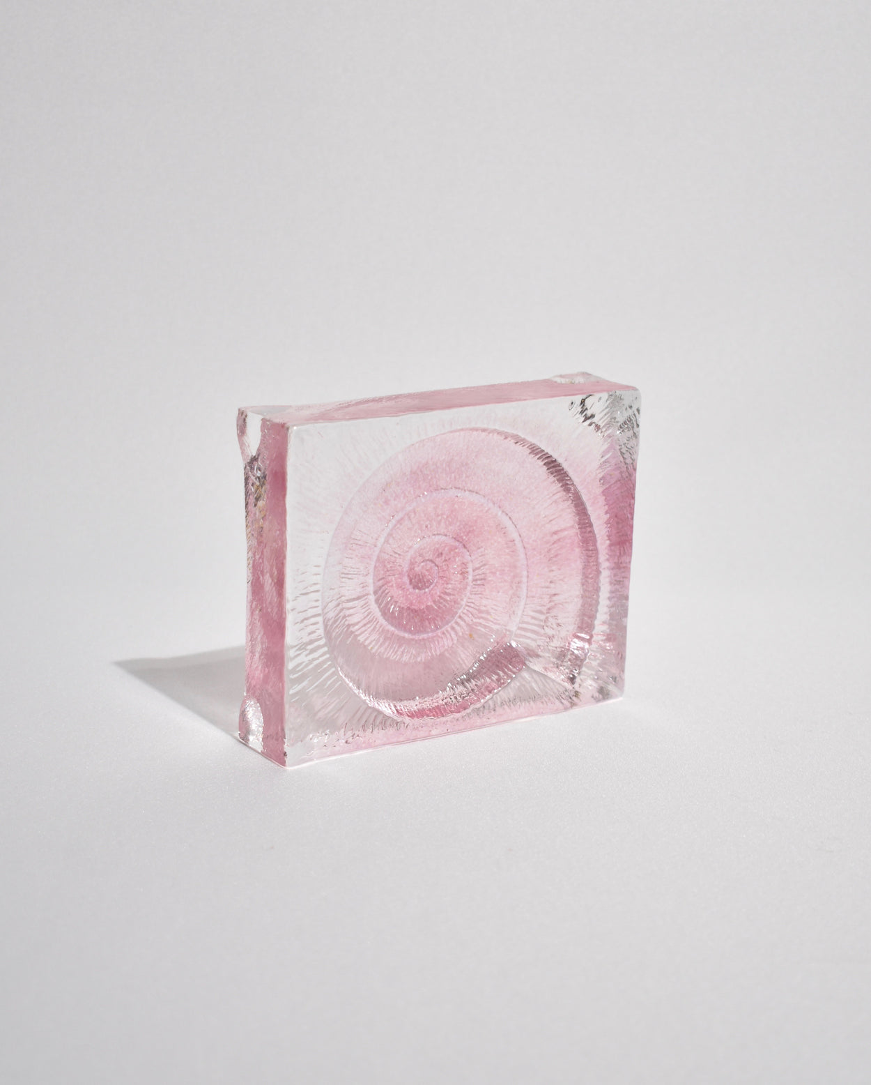 Pink Fossil Paperweight