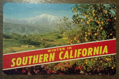 Winter in Southern California Postcard