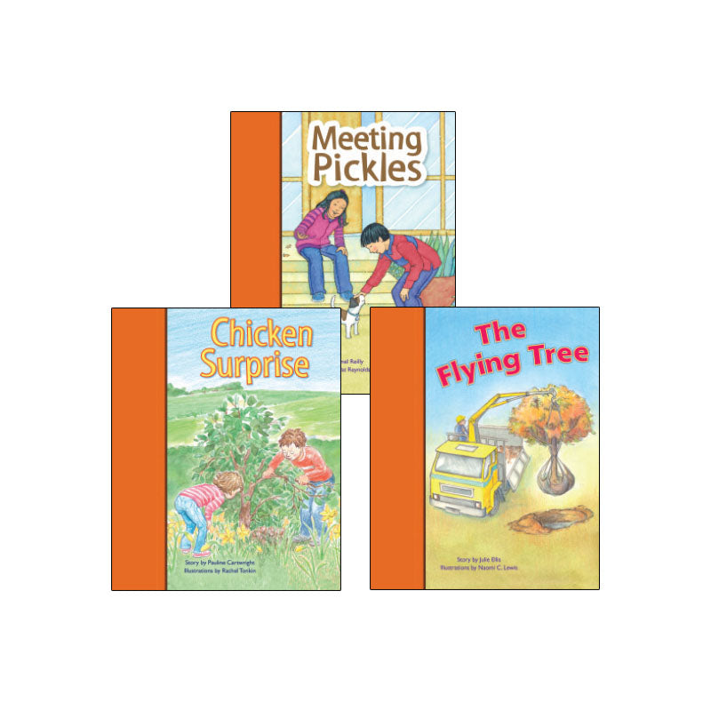 PM Stars Bridge Books First-Third Grade Orange: Variety Pack