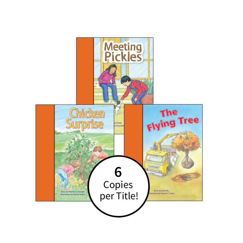 PM Stars Bridge Books First-Third Grade Orange: Class Pack