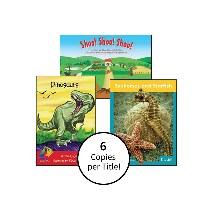 Multipublisher Guided Reading Level C : Class Pack