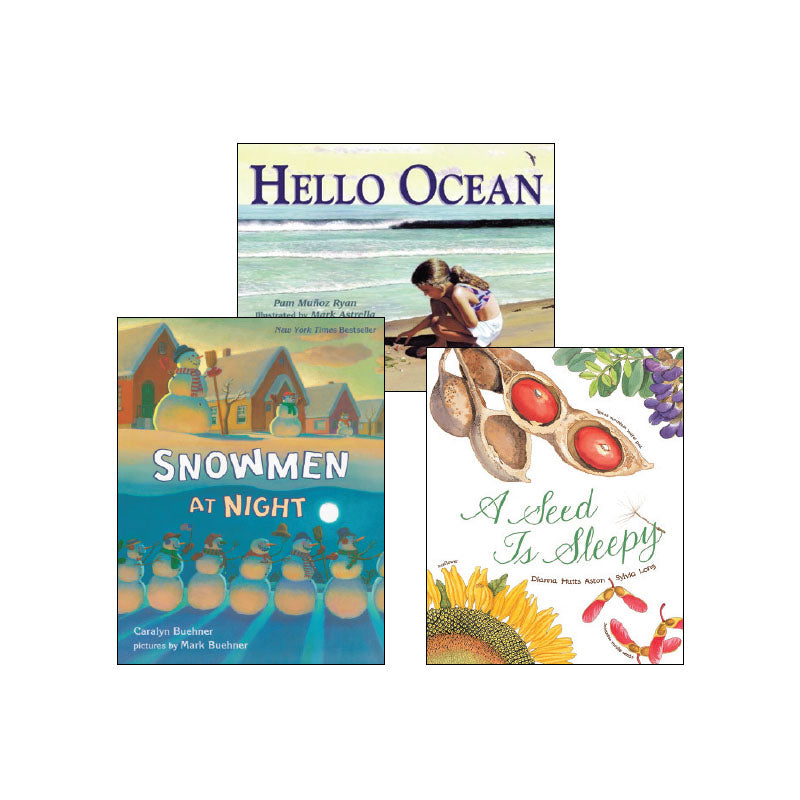 First Grade Comprehension Strategies: Classroom Library