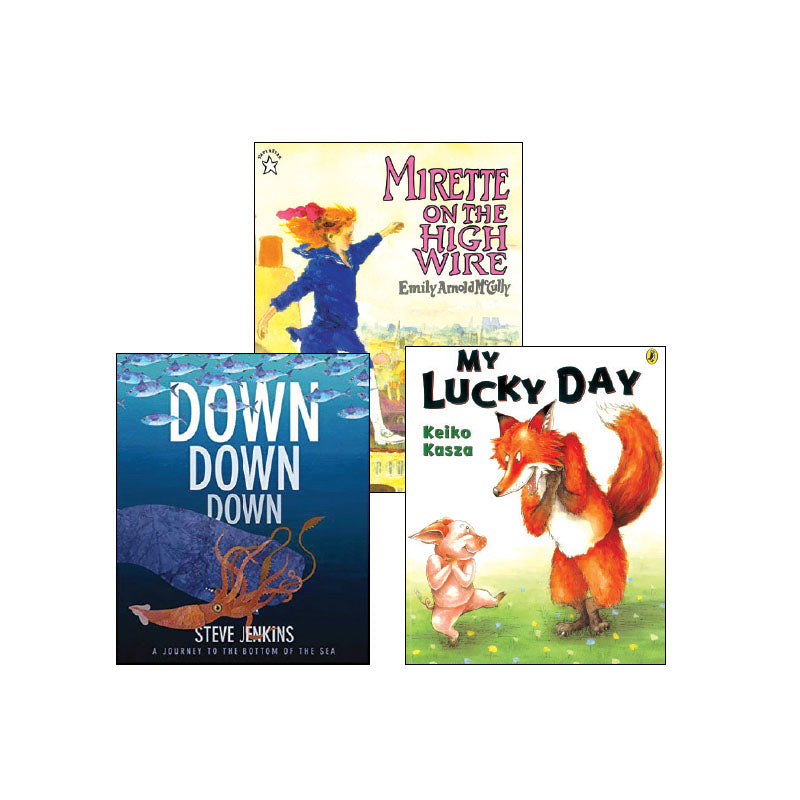 Second Grade Comprehension Strategies: Classroom Library