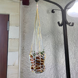 Hand Crocheted Plant Hanger in Pastels