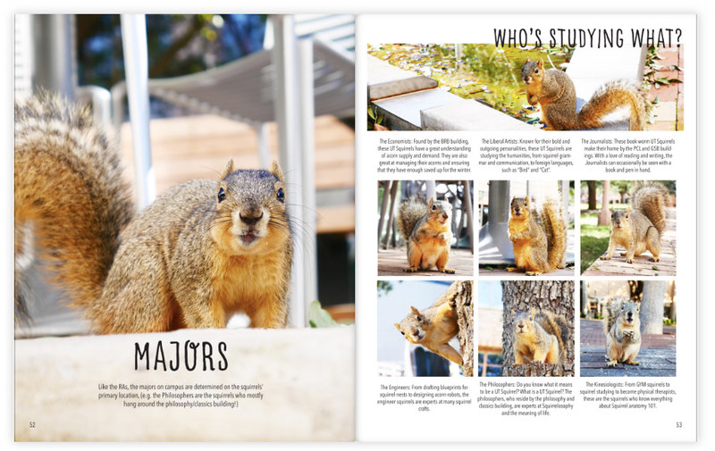 Squirrels of UT - The Yearbook