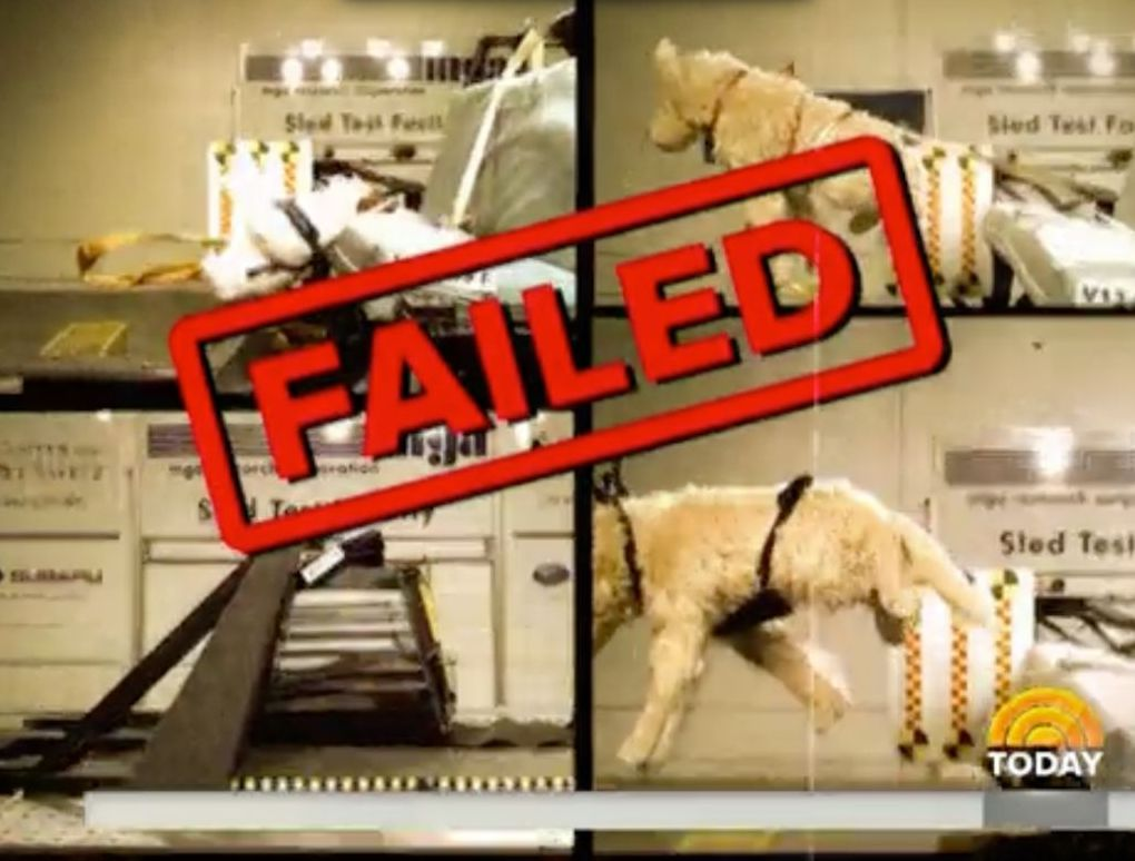 Pet Travel Safety Products Investigated: The Today Show