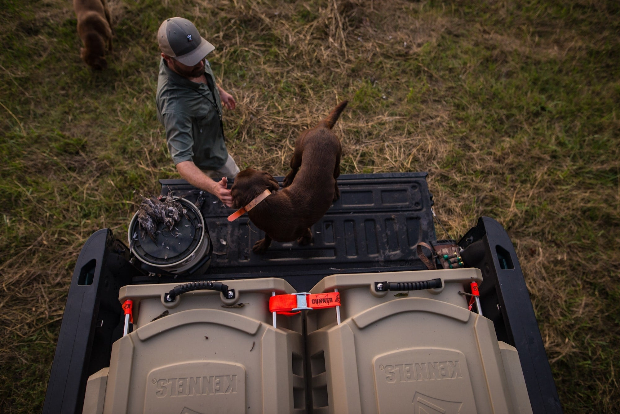 Southern Tradition Of Dove Hunting