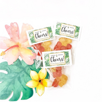 Champagne Gummy Bears Rose Brut Flavored Party Favors Cheers Non-Alcoholic Bachelorette Bridal Party Showers