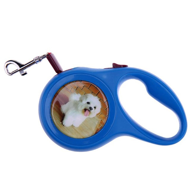5M/3M Dog Collar Leashes Dog Elastic Automatic Retractable Leashes For Dogs Harness Puppy Patrol Rope Walking Dogs