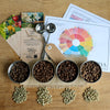 Yarra Valley Garden Party Coffee Tasting Kit - DIY (cupping bowls not included)
