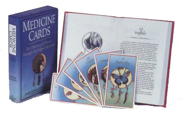 Animal Cards and Book