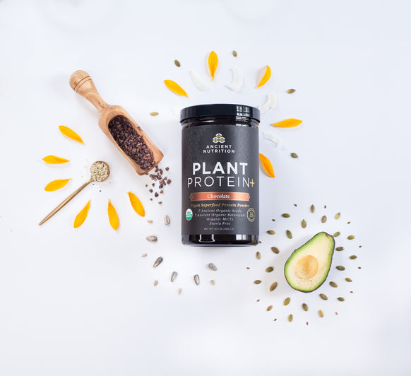 Plant Protein+ Chocolate