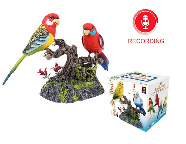 A Pair of Recording Functional Bird Melopsittacus Undulatus the Ensemble Bird Beautiful Birds Gifts Toy Pen Pencil Holder