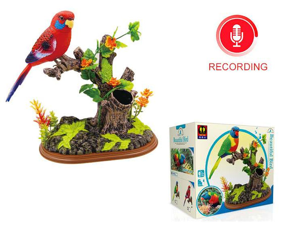 Recording Functional Bird Eastern Rosella the Ensemble Bird Beautiful Birds Gifts Toy Pen Pencil Holder