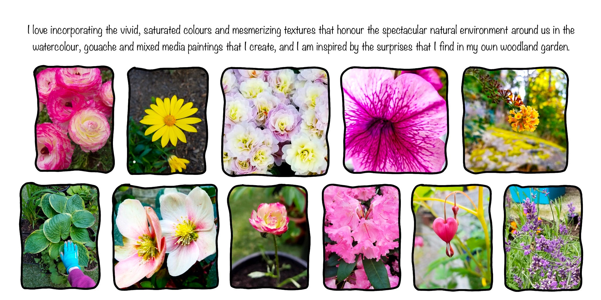 I love incorporating the vivid, saturated colours and mesmerizing textures that honour the spectacular natural environment around us in the watercolour, gouache, and mixed media paintings I create, and I am inspired by the surprises I find in my own woodland garden.