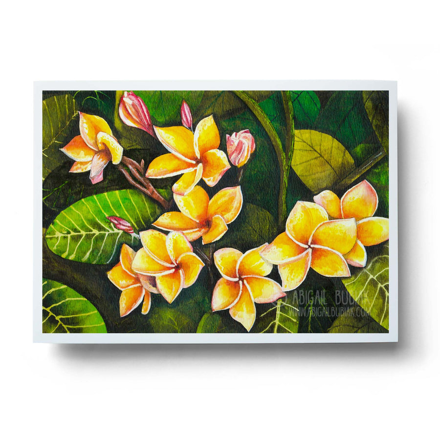 hawaiian plumeria tropical flowers watercolour wall art print