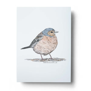 Little Finch Art Print
