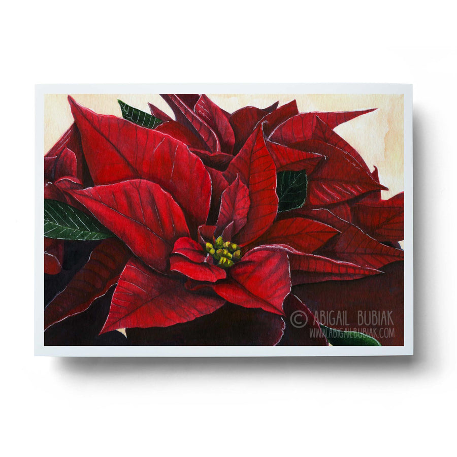 red watercolour poinsettia flower handmade christmas wall art print