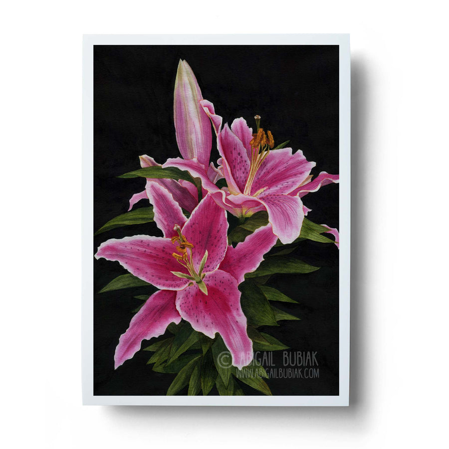 stargazer lily watercolour flower wall art print