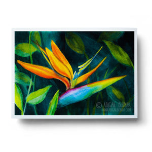 watercolour bird of paradise tropical flower wall art print