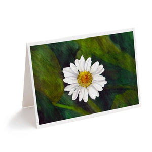 watercolour daisy flower art greeting card