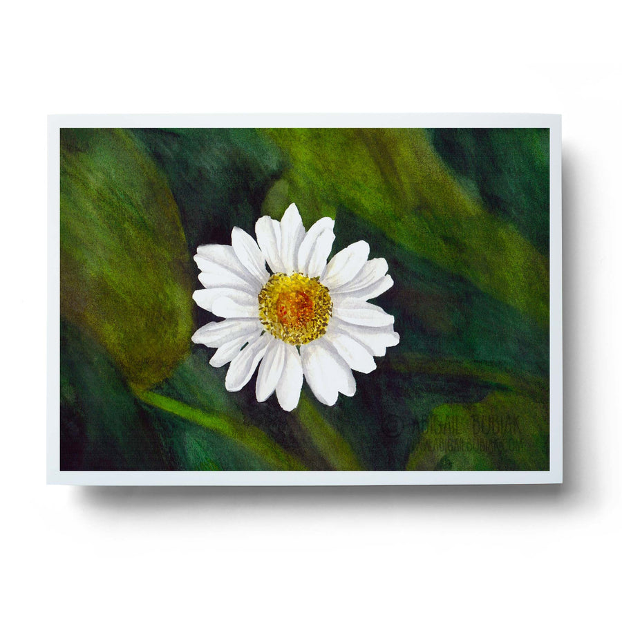 watercolour daisy flower wall art print