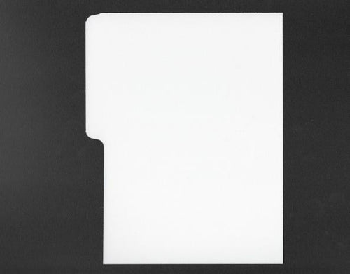 White DVD divider for filing films