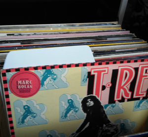LP vinyl sortd with Filotrax Dividers