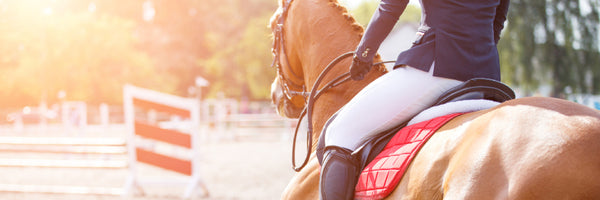 Why You Should Always Volunteer at Horse Shows