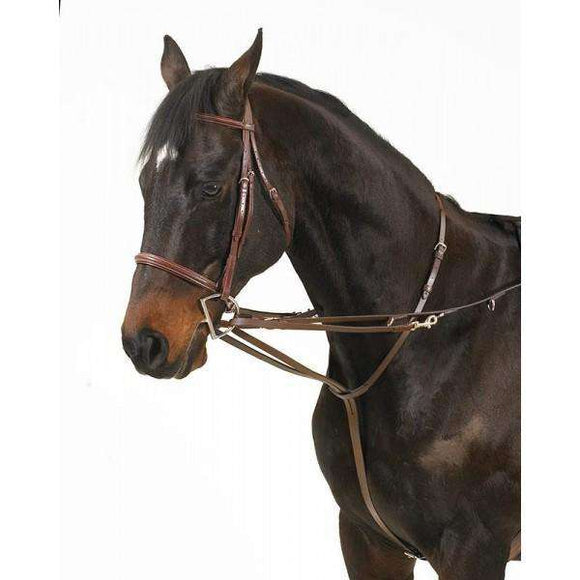 Camelot German Martingale