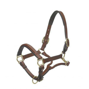 Ovation Elite Wide Square Raised Padded Fancy Stitch Leather Halter