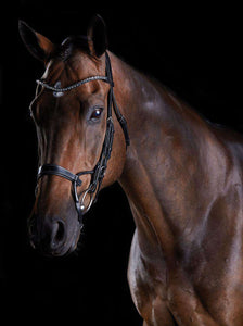 Collegiate Comfitec Crystal Bridle, Full English Bridles, Collegiate, One Stop Equine Shop - One Stop Equine Shop
