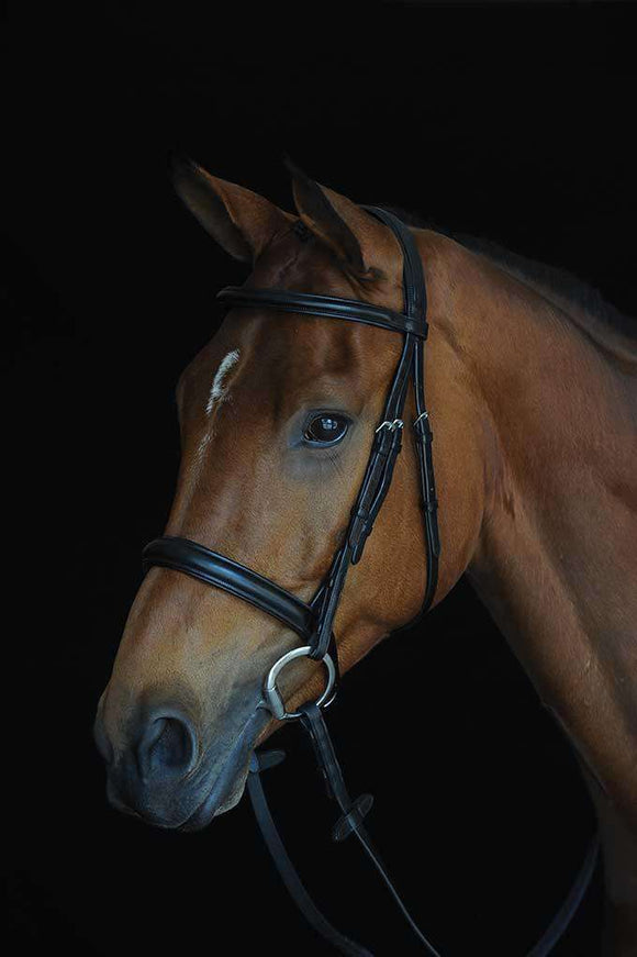 Collegiate Comfort Crown Padded Raised Cavesson Bridle, Full English Bridles, Collegiate, One Stop Equine Shop - One Stop Equine Shop