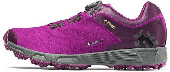 Icebug DTS3 Women's RB9X GTX Hiking Shoe