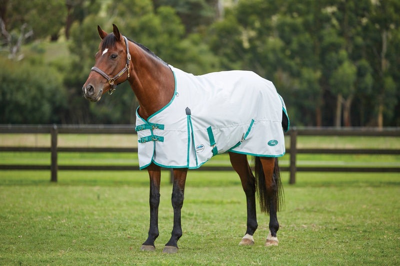 Weatherbeeta Green-Tec 900D Standard Neck Lite Plus Turnout Sheet