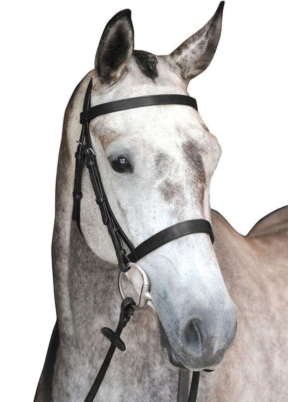 Collegiate Hunt Cavesson Bridle IV, Full English Bridles, Collegiate, One Stop Equine Shop - One Stop Equine Shop