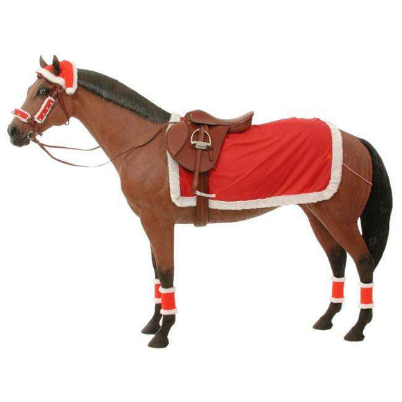 JT International Complete Christmas Riding Set