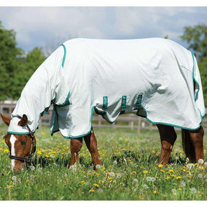 Horseware Ireland Amigo Aussie Full Body/Barrier Fly Sheet, Fly Sheets, Horseware, One Stop Equine Shop - One Stop Equine Shop