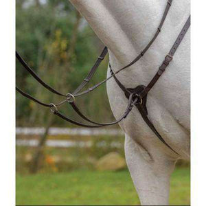 Shires Avignon Three Star Breastplate