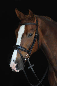 Collegiate Mono Crown Padded Raised Flash Bridle, Full English Bridles, Collegiate, One Stop Equine Shop - One Stop Equine Shop