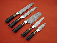 CUSTOM MADE DAMASCUS BLADE 5Pcs. CHEF/KITCHEN KNIVES SET
