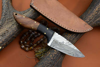 CUSTOM HANDMADE DAMASCUS HUNTING KNIFE Handle Walnut Wood  Bolster Horn