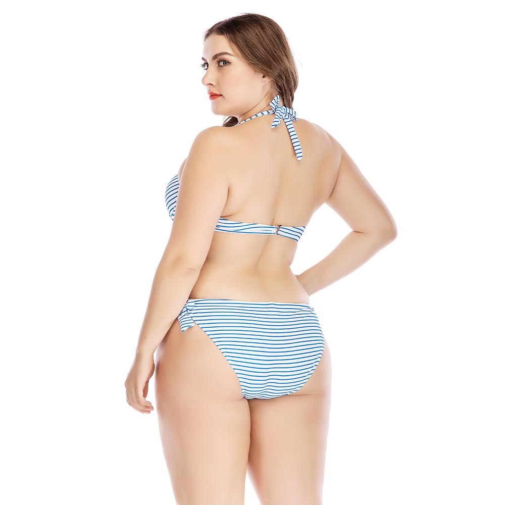 Lisa- Womens Blue Striped Plus Size Bikini Two Piece Set