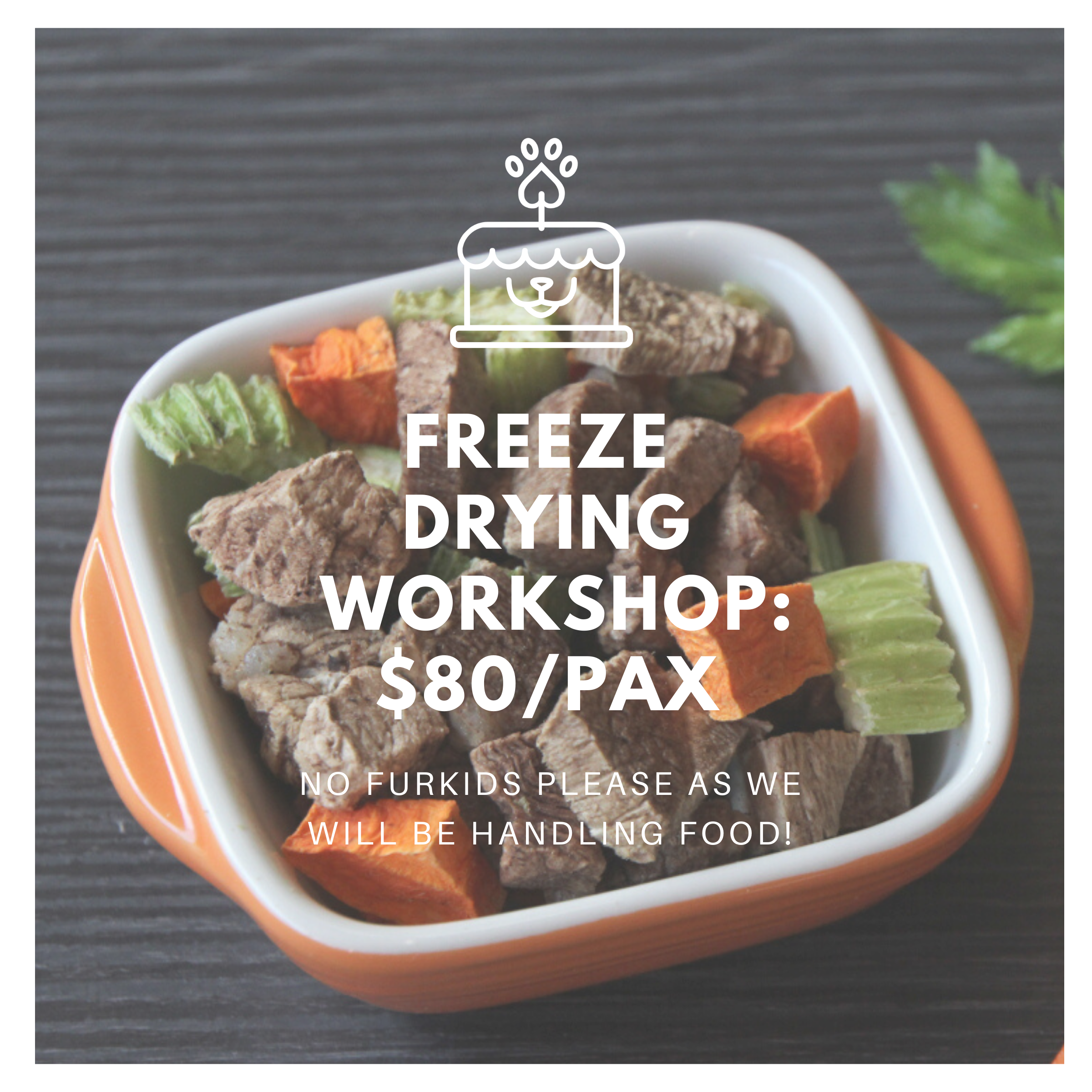 Freeze Drying Workshop