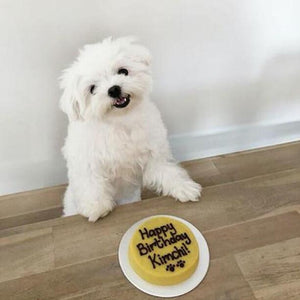 [GOOD DEEDS - TO BE DONATED TO SPCA] Personal Cake
