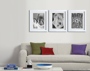 "Homeworth 3 PCS PHOTO FRAME ITEM NO.  HF35E 24""X36""/20""X30"""